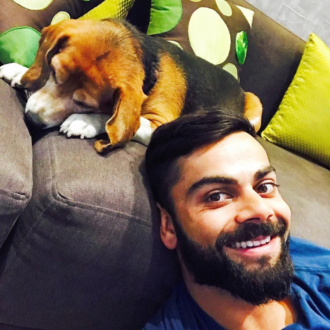 Image result for virat kohli with her dog