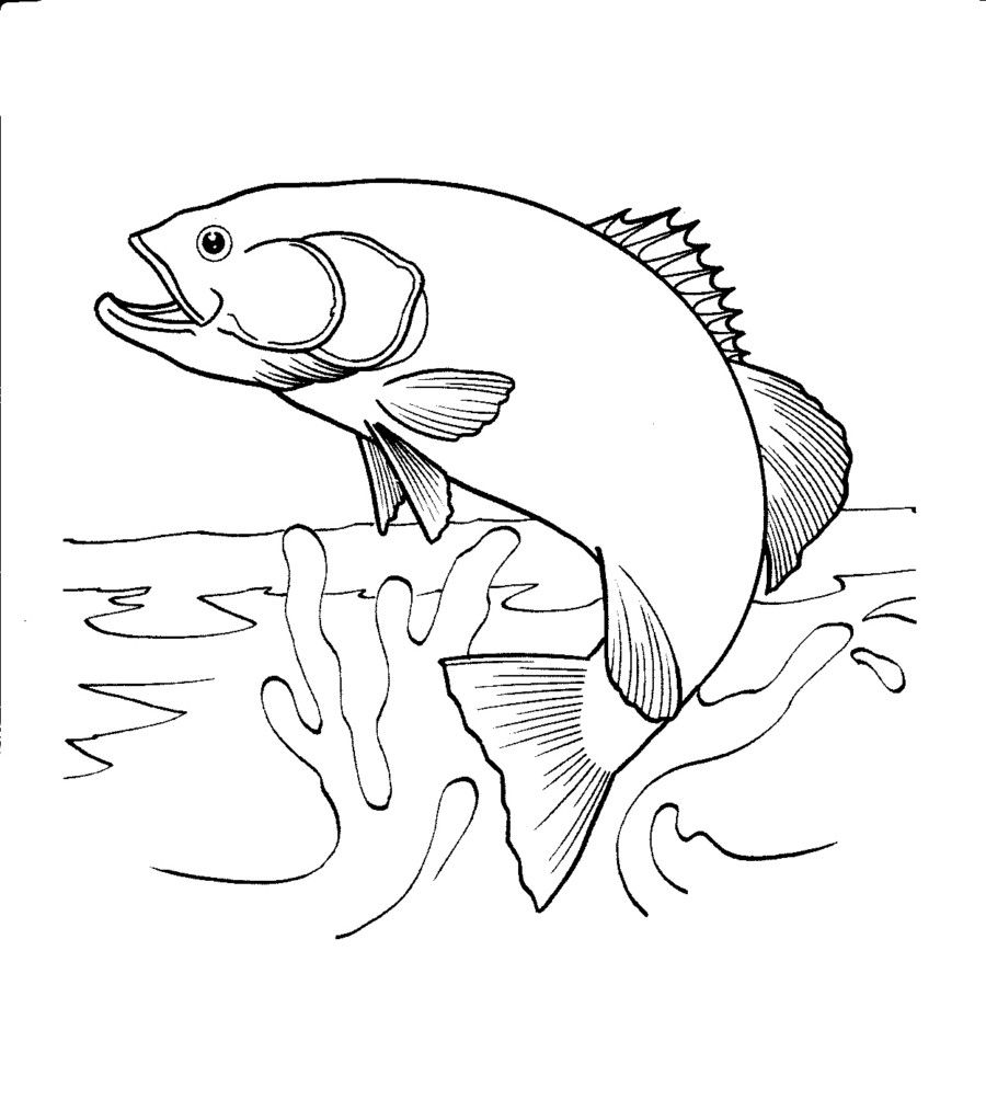 Salmon Jumping Out Of Water Coloring Page