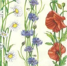 Dessin De Bleuet Recherche Google Fleurs De Savoie