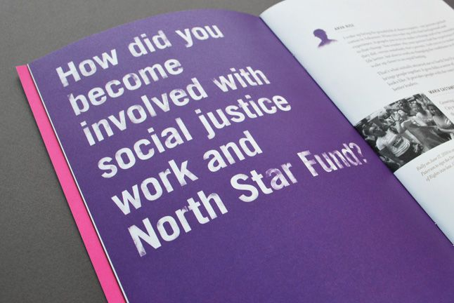 Hyperakt » Work » North Star Fund » NSF Annual Report 2010: A Community of Leaders