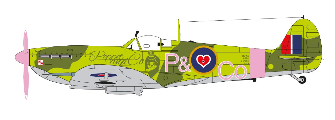 "Flt Lt Poppet & Co's personalised Spitfire.  ""Don't shoot i'm a tourist"" Available as a limited edition print."
