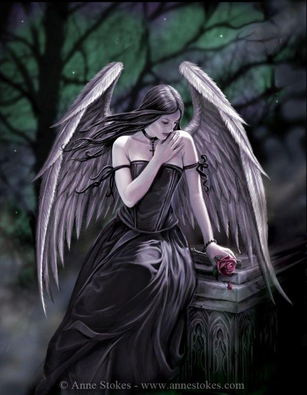 Картинка темный ангел с крыльями и розой