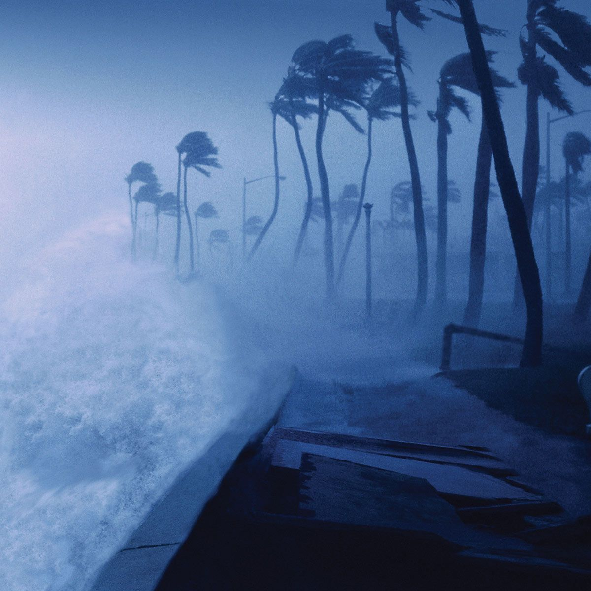 Severe Weather What To Do For A Hurricane Severe Weather Home Protection Home Safety