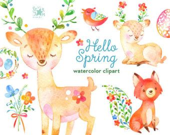 Hello Spring Watercolor Animals And Floral Clipart Deer Fox Flowers Bird