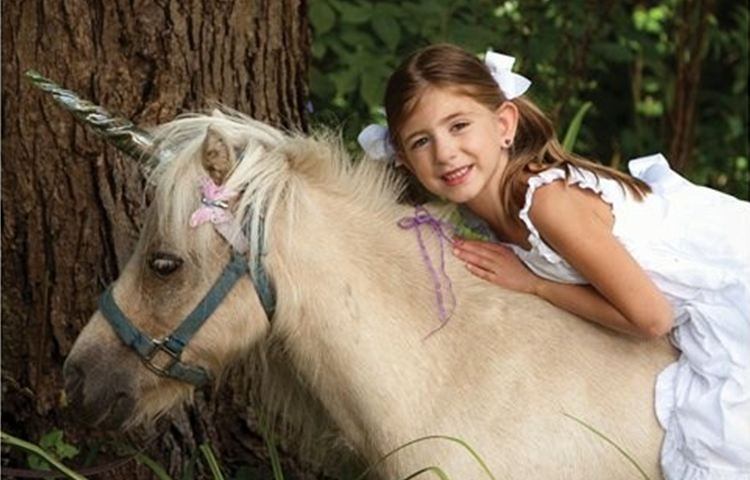 Chamberlin pony rides mobile petting zoo home dexter