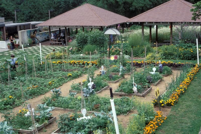 botanical vegetable garden from Bergen County Edible Garden