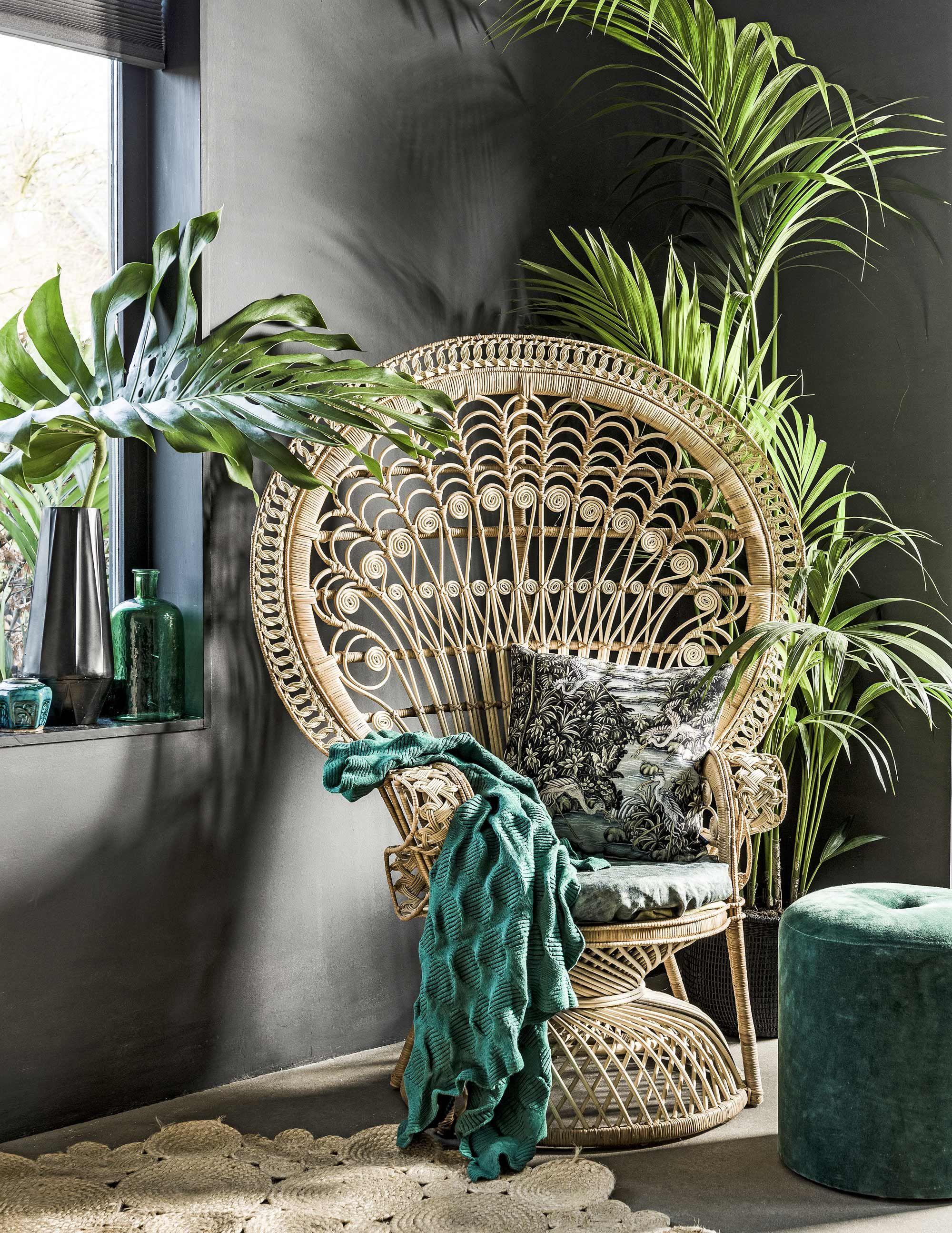 4x een tropisch interieur. Combineer groen, planten en deze rotan ...