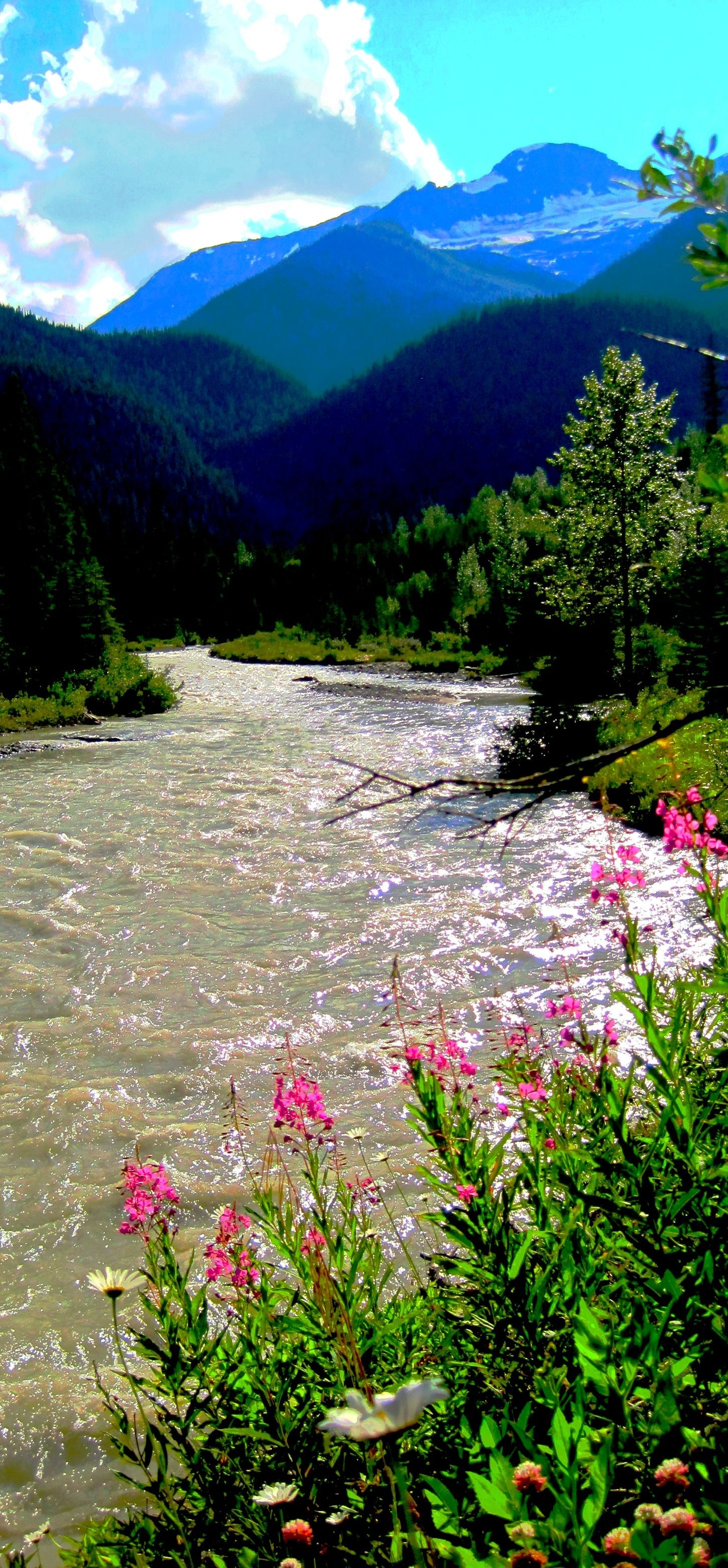 Rocky Mountain River This Reminds Me Of The John Denver Song Rocky Mountain High Beautiful Nature Beautiful Landscapes Scenery