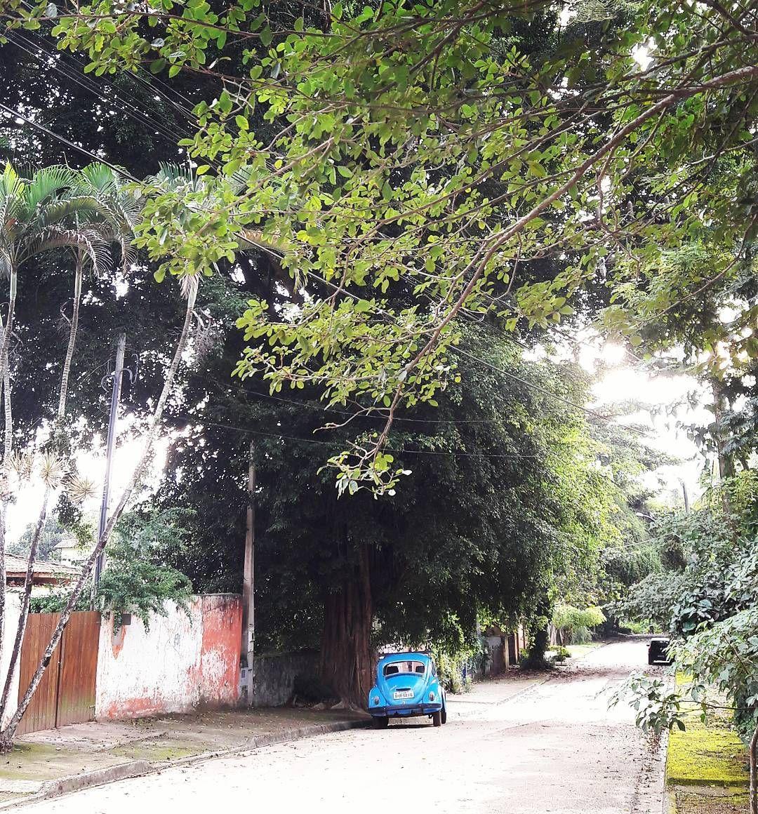 Pensa num cenário pacato.  #minhavidaemilhabela #ilhabela #barravelha