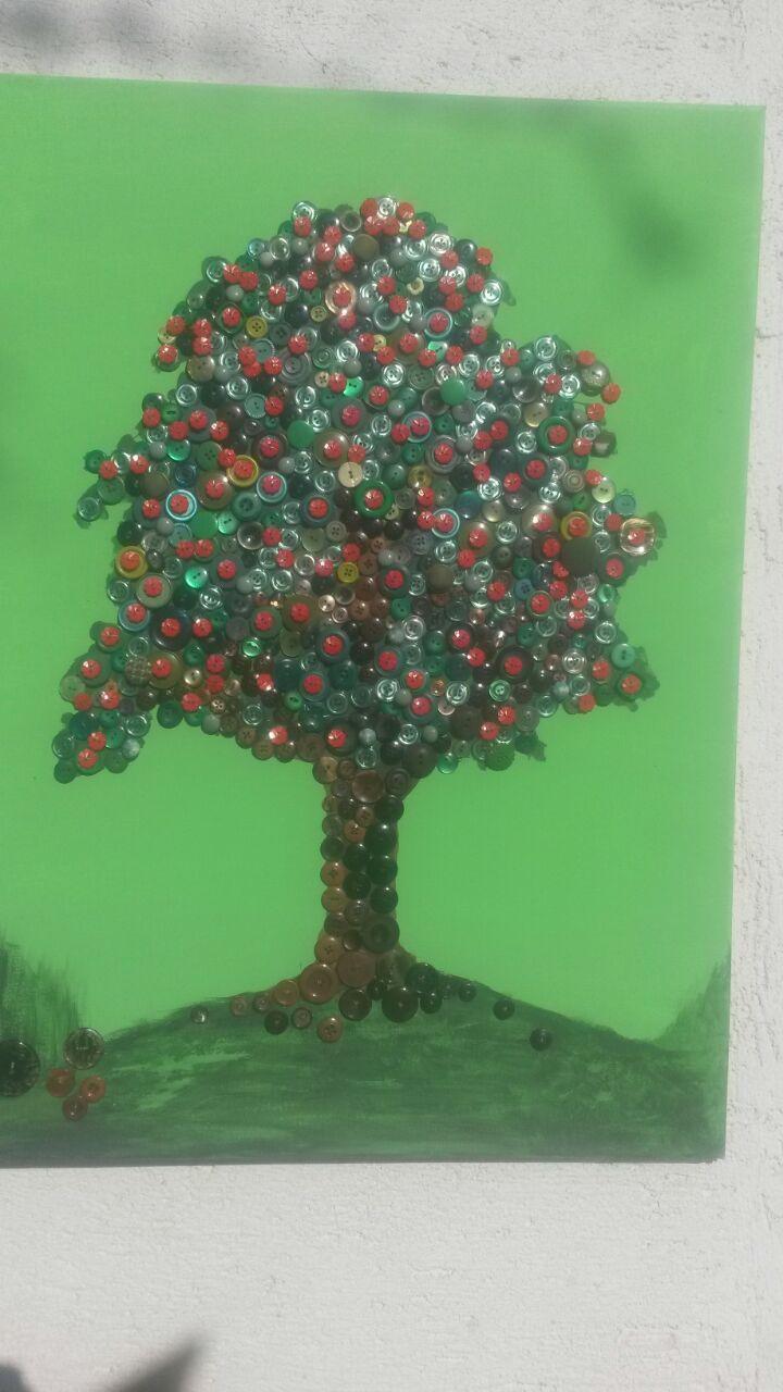 knopf-apfelbaum