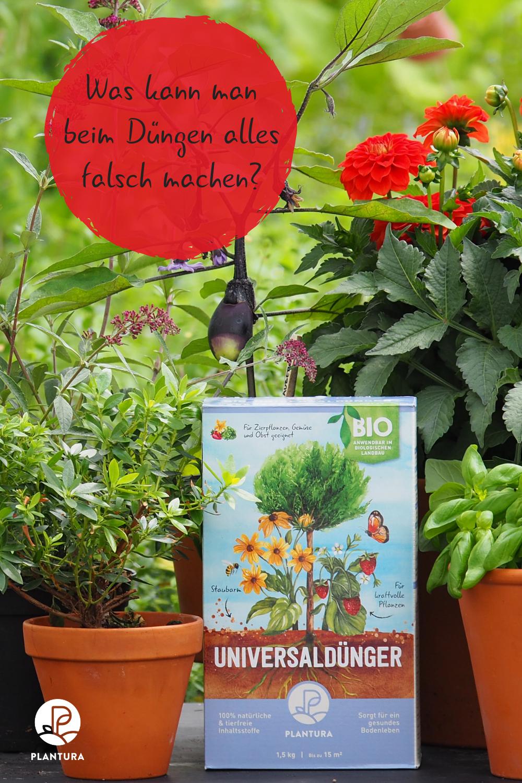 Funktioniert Dngemythen Hufigsten Gardening Beliebte Duengen Richtig Artikel Unserem Machen Zeigen Garten Falsch Fehler Klrendie Book Cover Pink