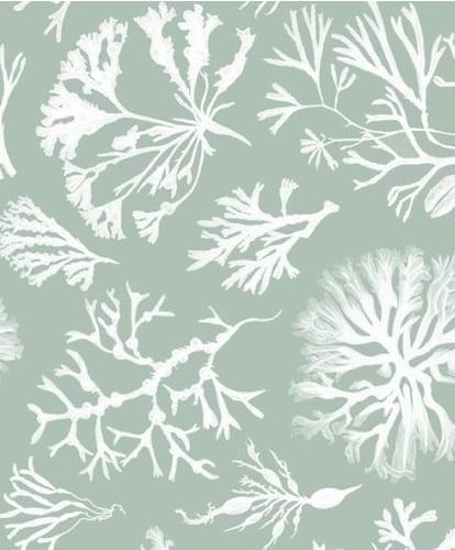 Walls Windows Floors Min Hogg Seaweed Collection Wallpaper Coastal Wallpaper Coastal Fabric Wallpaper