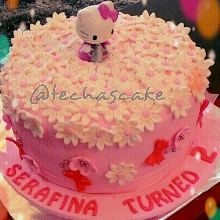Pink hello kitty daisy garden birthday cake Techas homemade