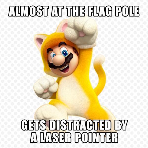 Mario Meme Mario Meme Super Mario Memes Mario Memes Super Mario 3d
