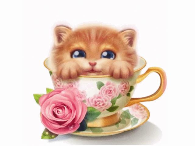 Удачи, иллюстрации котиков анимация с добрым утром