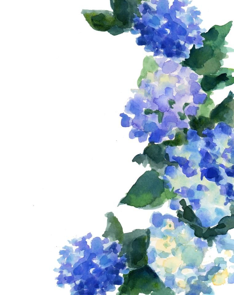 Pin By Richmondmom On Flowers Watercolor Hydrangea Watercolor Flowers Flower Painting