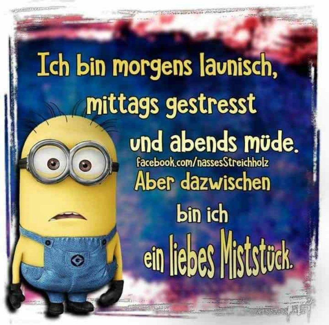 Stimmt Hahaha Minions Spruche Witzige Spruche Guten Morgen Lustig