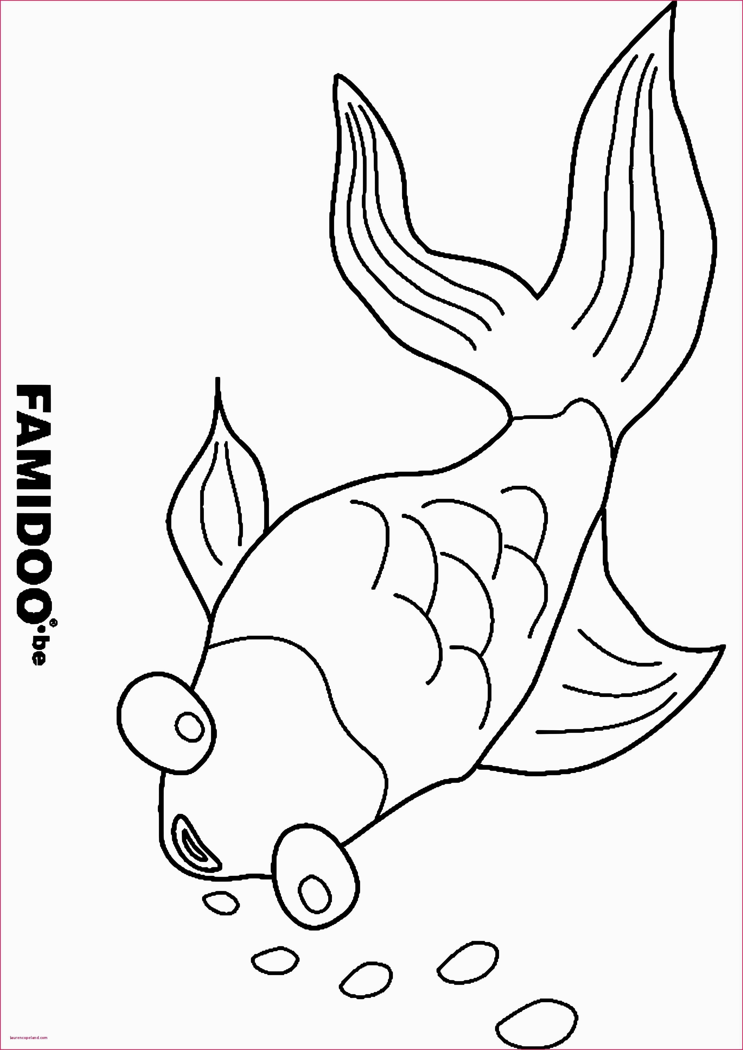 Einzigartig Malvorlagen Fische Zum Ausdrucken #Malvorlagen ...