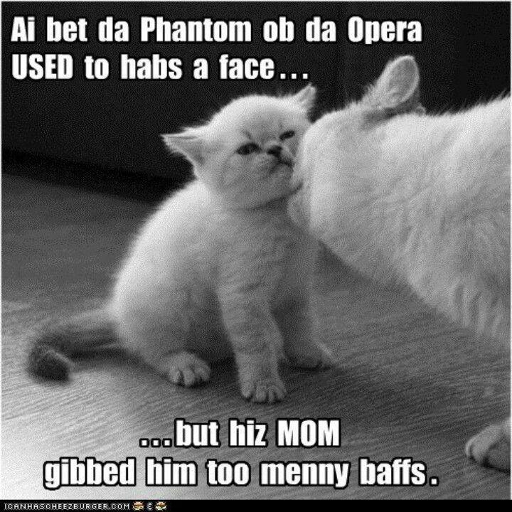 Yep, uhhuh, bitty paws. Mama done cleaned him too much