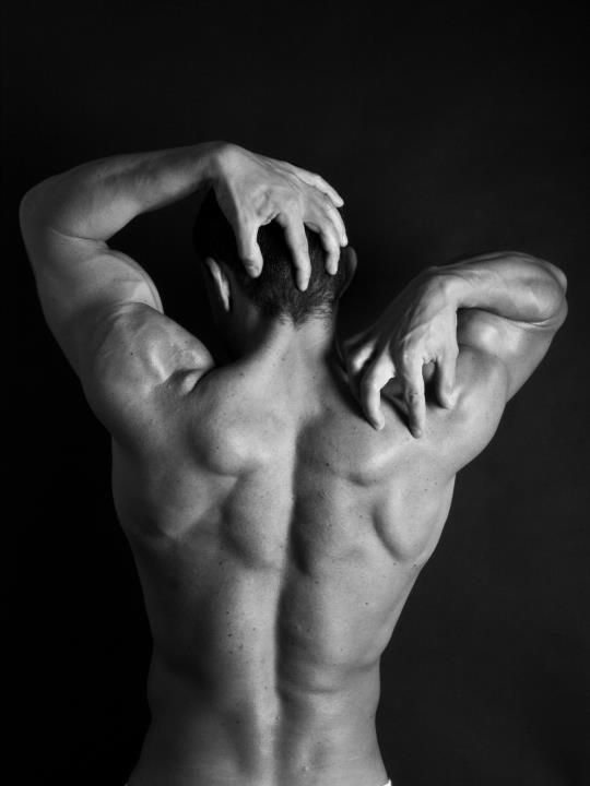 Anatomy - Male - Back | liebe | Pinterest | Anatomy, Anatomy ...