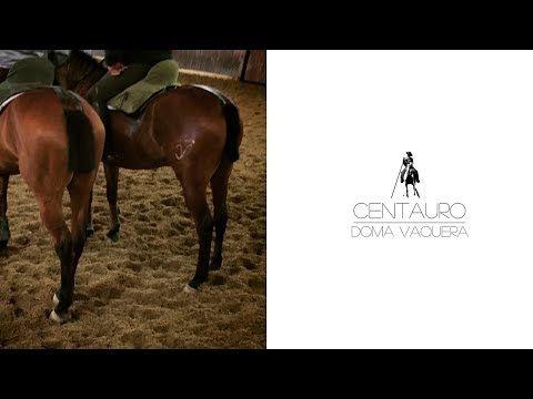 bb2206c2bbc74 Centauro - Compilation past 6 months - YouTube