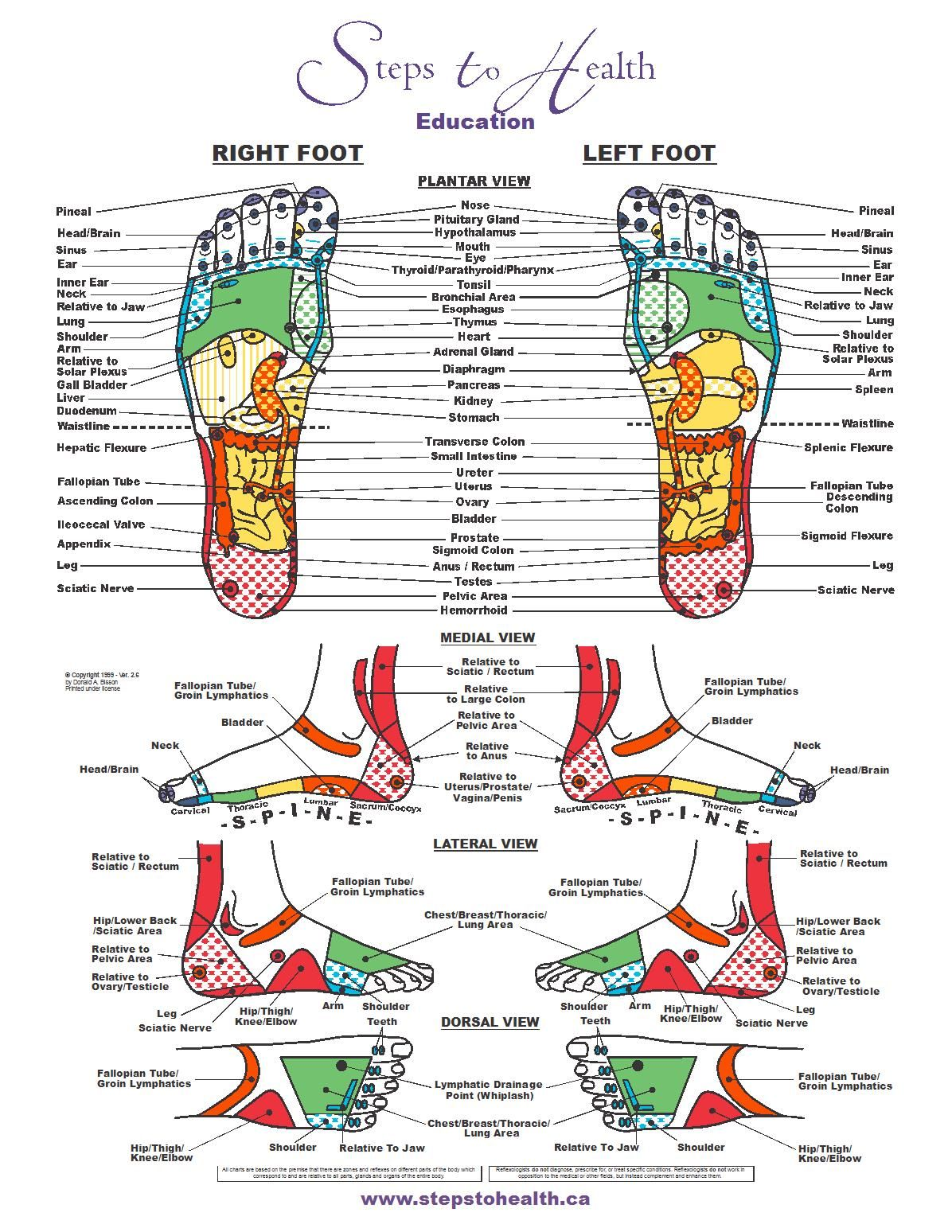 Foot Zoning Chart Our Bodies Communicate To Us Clearly And Specifically If We Are Reflexology Chart Foot Reflexology Reflexology