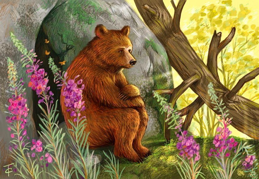 данное сказка о медведихе с картинками бесплатную картинку мобильный