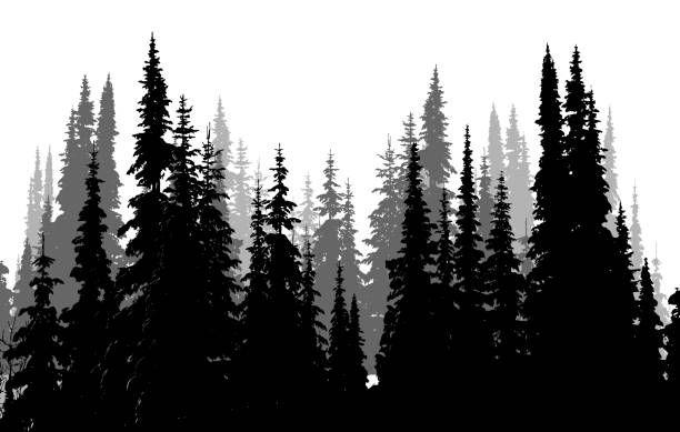 Treeline Silhouette Illustraties en vectorbeelden - iStock ...