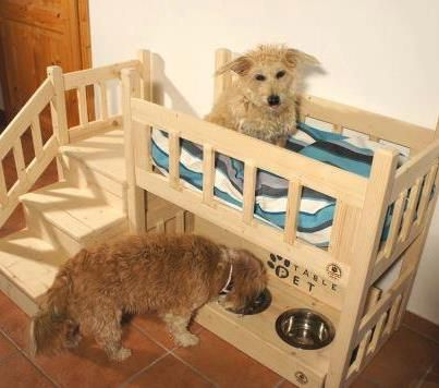 Pet Bunk Bed Feeder Love It With The Food Bowls Under Neath