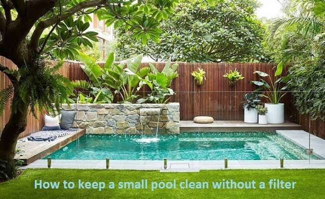 How To Keep A Small Pool Clean Without A Filter Garden Pool Design Small Pool Design Small Backyard Pools
