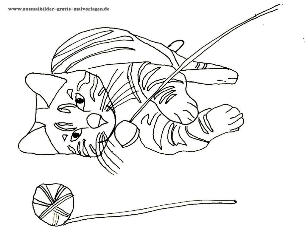 ausmalbilder lustige katzen  tiffanylovesbooks