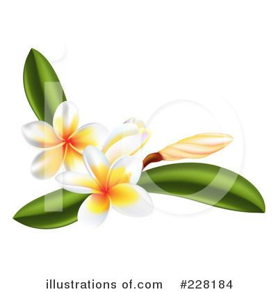pin by carolyn jackson on cards pinterest rh pinterest com plumeria clip art images plumeria clip art images