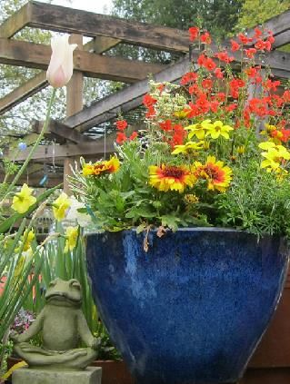 Flower Nursery Plant Santa Rosa
