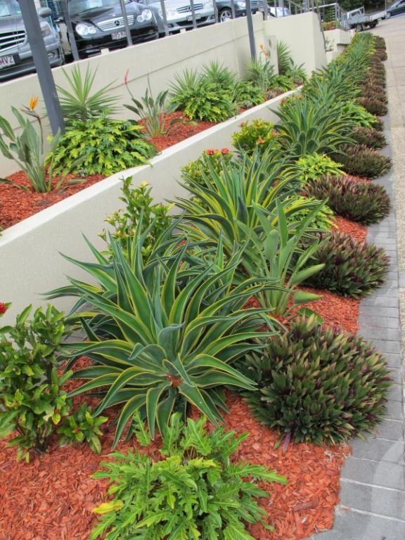 garden design ideas by utopia landscape design home garden outdoor flower power pinterest landscape designs outdoor flowers and gardens - Garden Design Brisbane