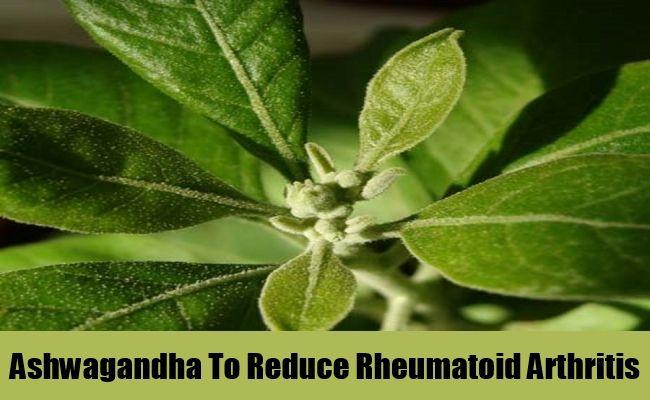 Rheumatoid Arthritis Home Remedies For Sunburn To Get Immediate Relief myherbalmart.com/home-remedies-for-sunburn-to-get-immediate-relief