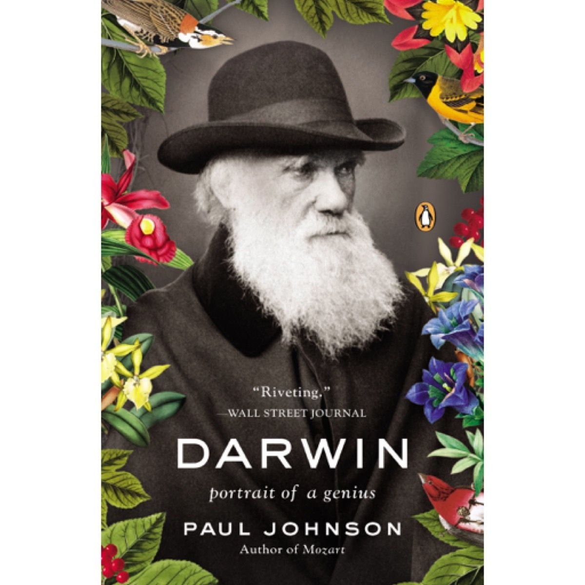 Darwin 36 Off 6 99 In