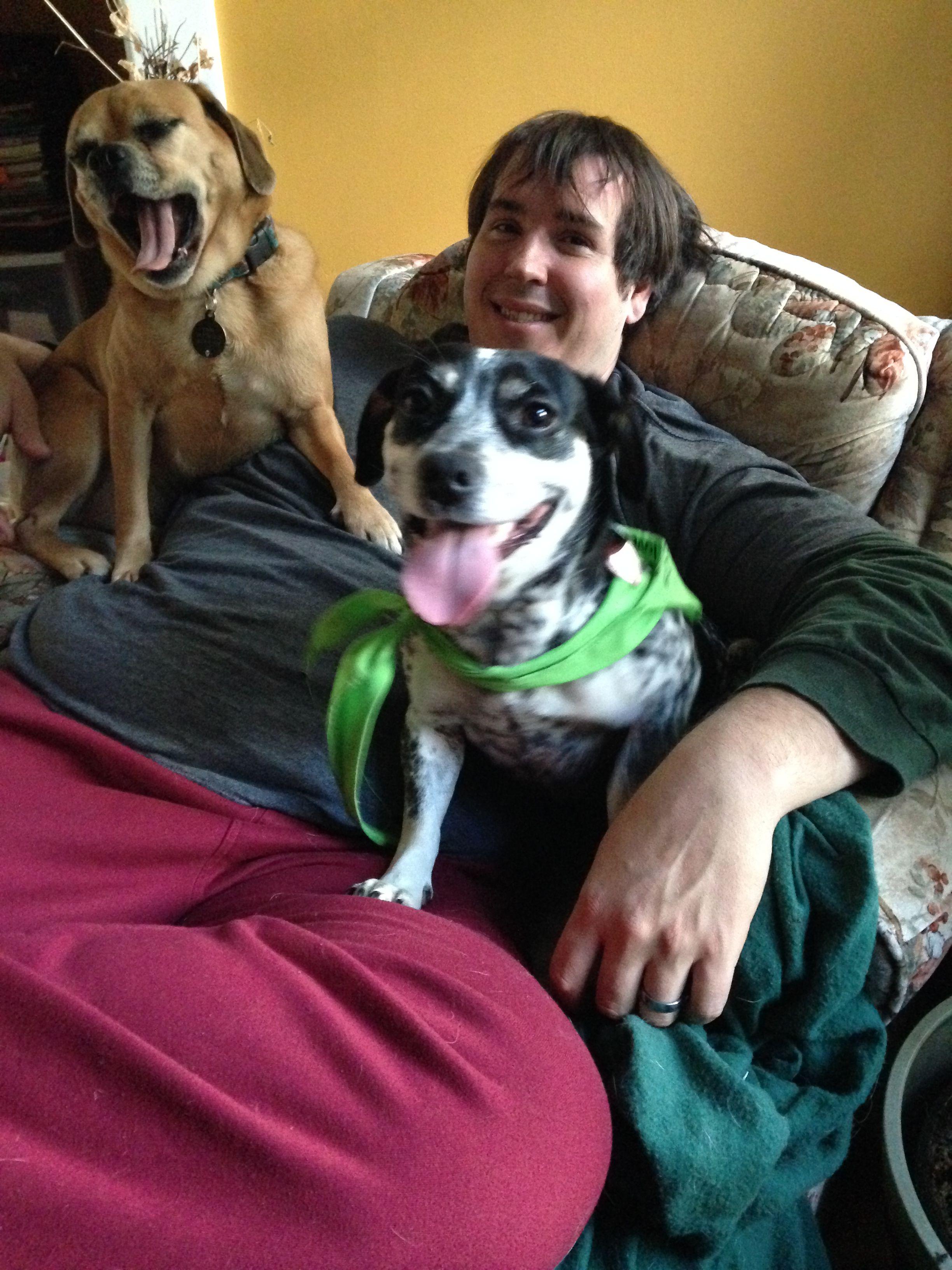 Winnie Dackel Mix Pawshake Hunde Fotos Hundefotos Hunde
