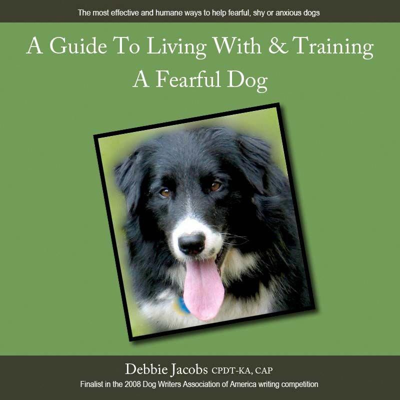 How To Train A Dog To Stay Inside An Invisible Fence And Pics Of