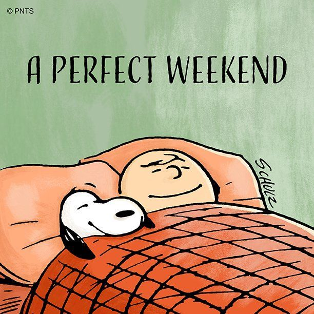 "PEANUTS on Twitter: ""This weekend was perfect.… """