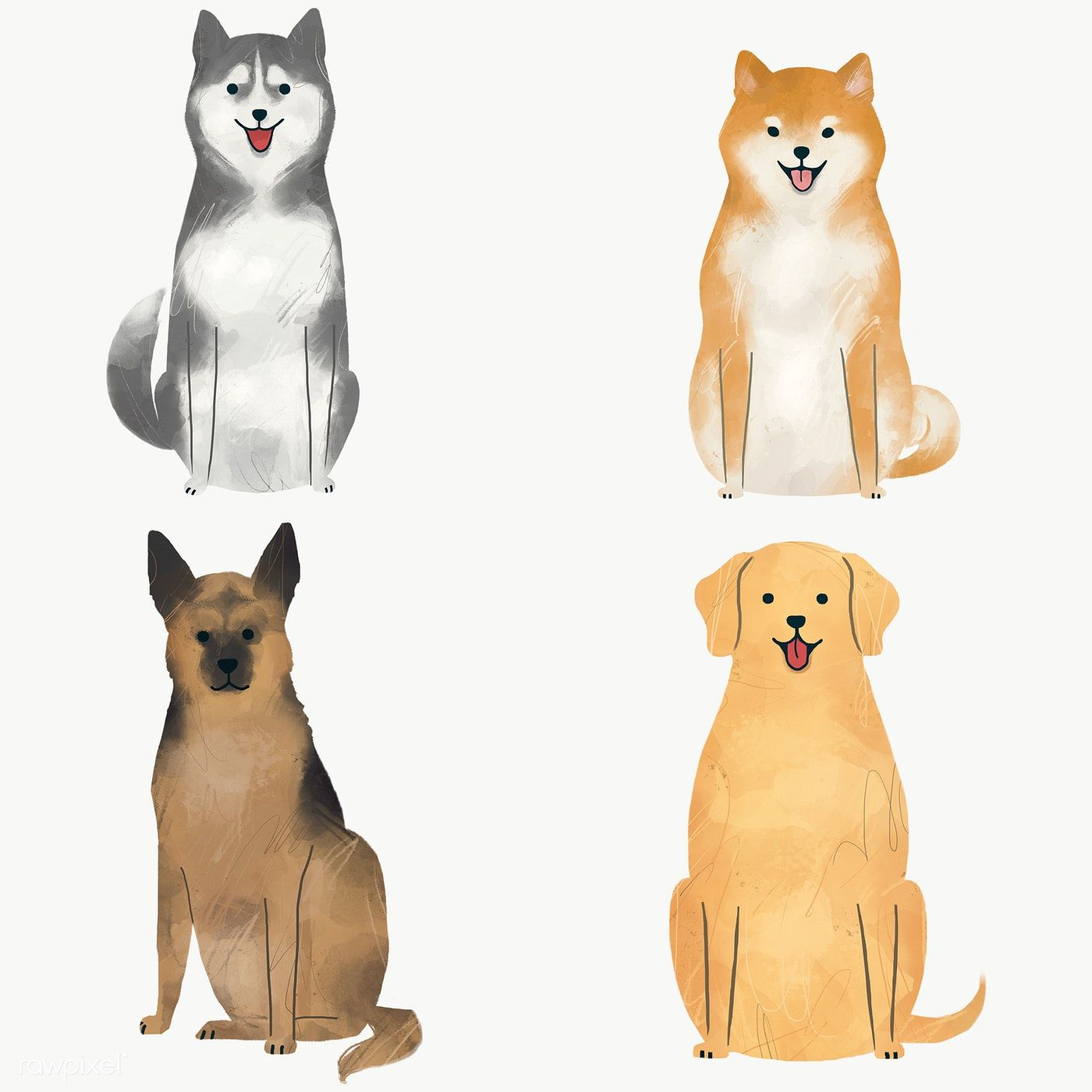 Download Premium Png Of Trained Dog Collection Transparent Png