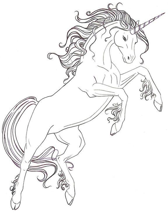Line Art To Colour | Horse coloring | Pinterest | Colorear ...