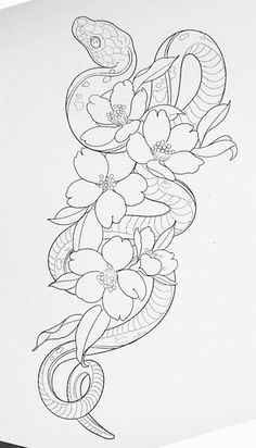 Photo of coloring pages