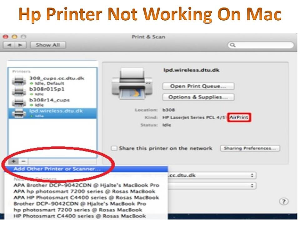 Pin by HP Printer on HP Printer Customer Service Toll Free