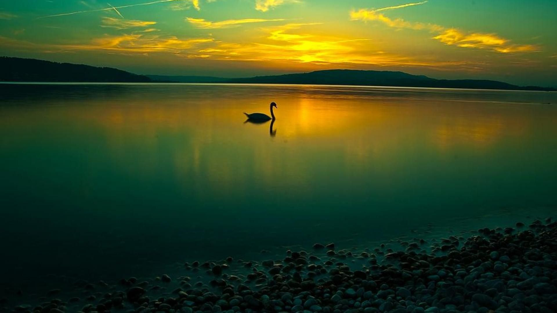 Tranquillity Tranquility Calmness Tranquillity