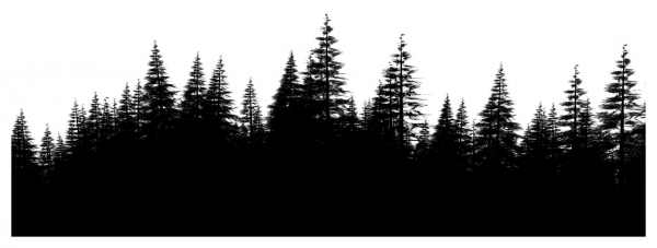 Div Div Class 600 227 Forest Silhouette Tree Silhouette Tattoo Forest Sketch