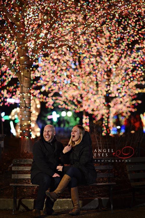 Chicago Proposal Photographer Lincoln Park Zoo Lights Best Wedding