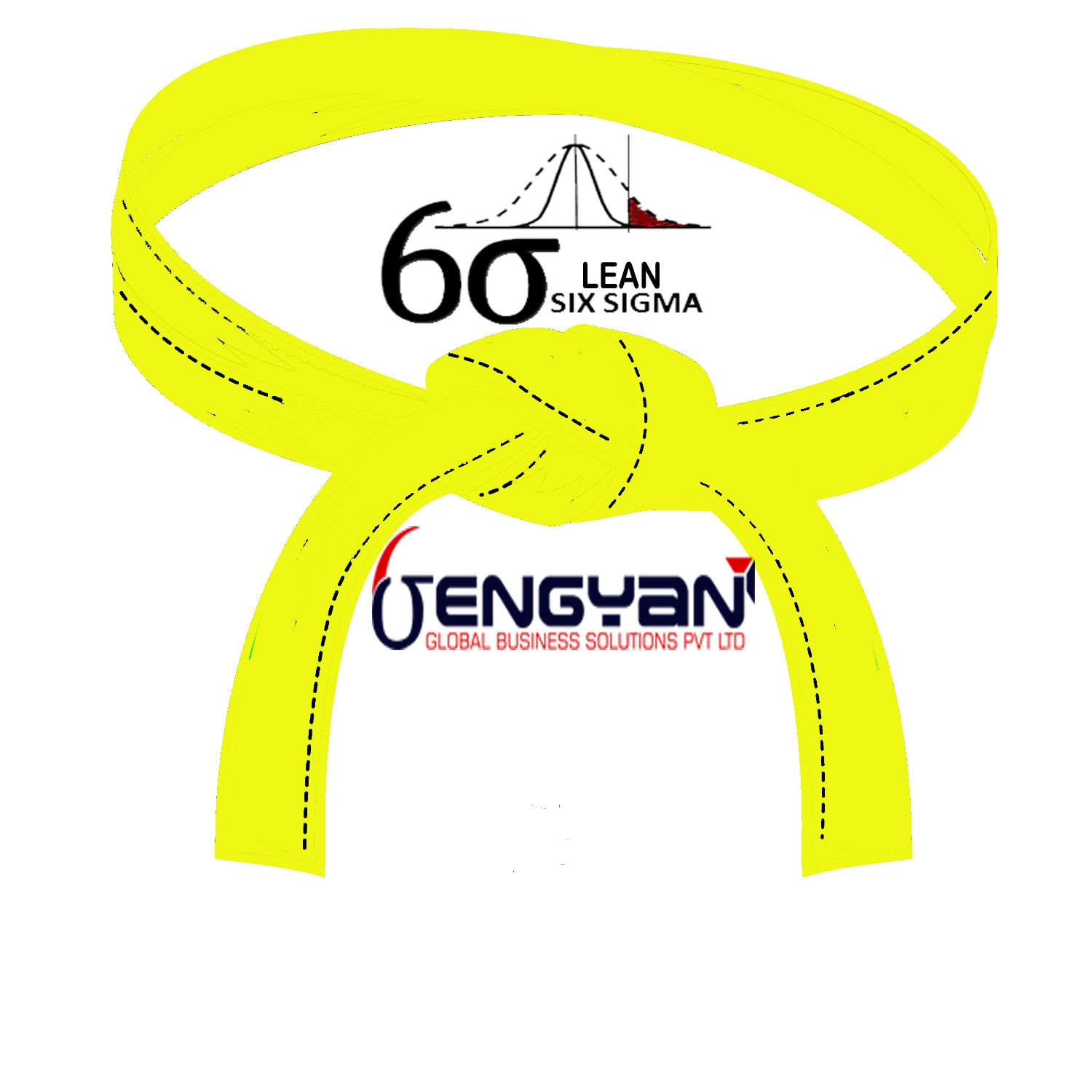Lean Six Sigma Yellow Belt Training The objective of the Yellow Belt
