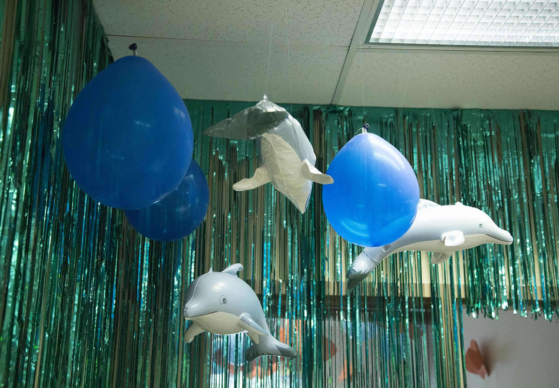 balloon dolphin how to make