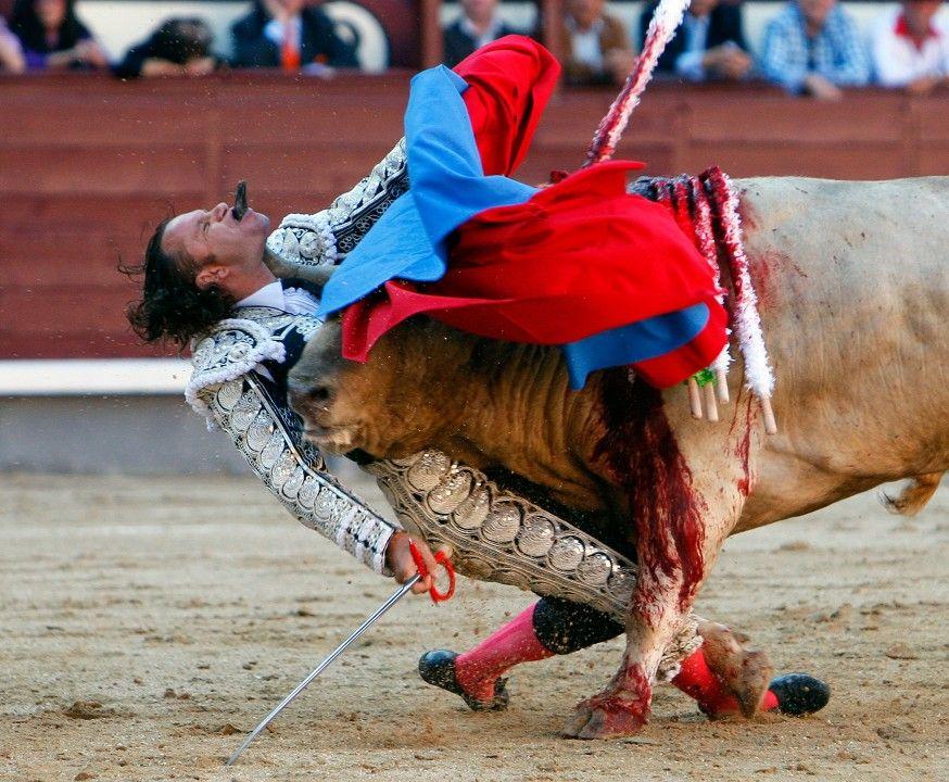 Julio Aparicio é chifrado por um touro, depois de perder o equilíbrio durante uma tourada em Madrid. Fotógrafo: Gustavo Cuevas.