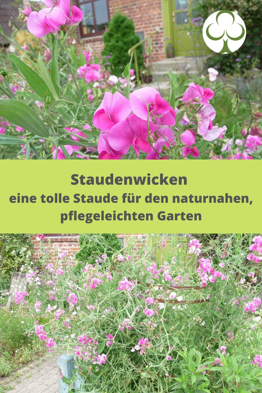 Blutenfulle Im Pflegeleichten Naturnahen Garten In 2020 Naturnaher Garten Bepflanzung Garten